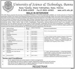 Assistant professor job